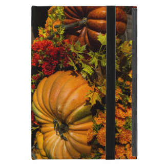 Pumpkin And Mum Arrangement Case For iPad Mini