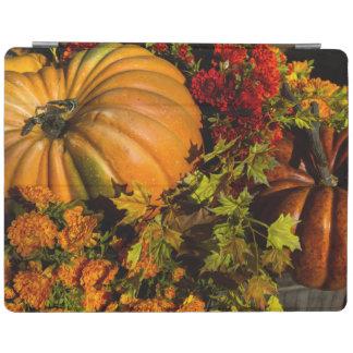 Pumpkin And Mum Arrangement iPad Cover