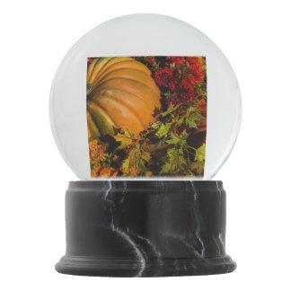 Pumpkin And Mum Arrangement Snow Globe