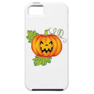 Pumpkin iPhone 5/5S Cases