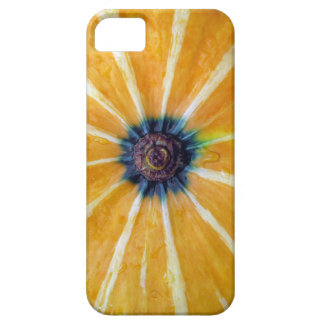 pumpkin case for the iPhone 5