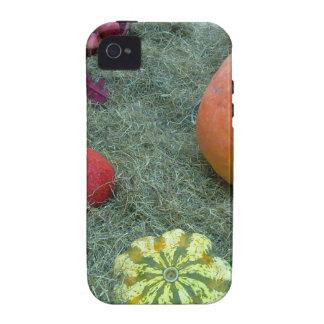 pumpkin fall autumn fruits Case-Mate iPhone 4 cover