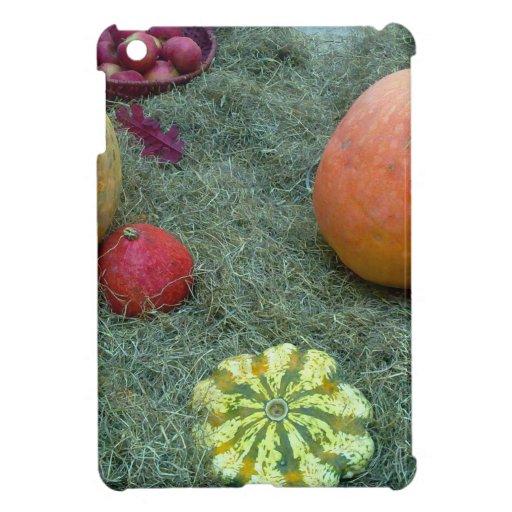 pumpkin fall autumn fruits cover for the iPad mini