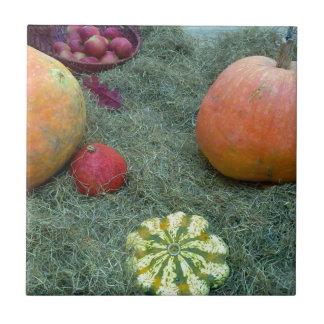 pumpkin fall autumn fruits small square tile
