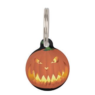 Pumpkin for Halloween... Pet ID Tag