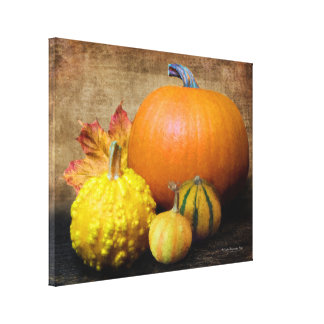 Pumpkin Gourds Still Life Canvas Print