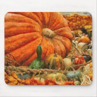 Pumpkin - Great Gourds Mouse Pad