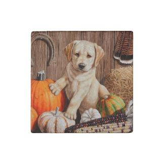 Pumpkin Harvest Puppy Stone Magnet