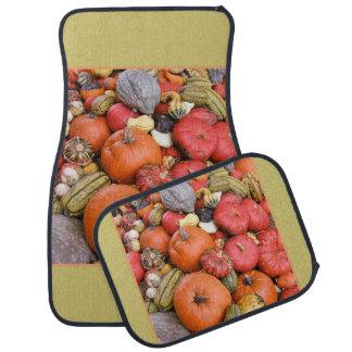 Pumpkin Harvest R01.1.1 Car Mat