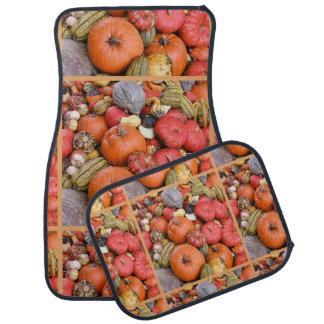 Pumpkin Harvest R01.1.4 Car Mat