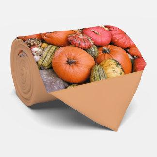 Pumpkin Harvest R01.1.4 Tie
