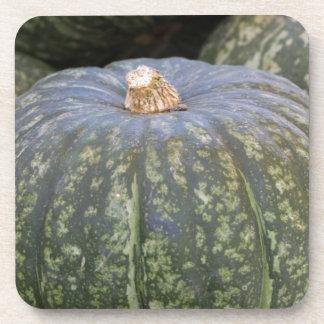 pumpkin in the store coaster