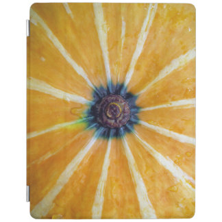 pumpkin iPad cover