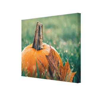 Pumpkin on the Grass Canvas Print