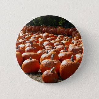 Pumpkin Patch Autumn Harvest Photography 6 Cm Round Badge