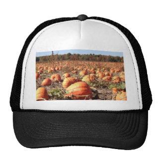 Pumpkin Patch Trucker Hats