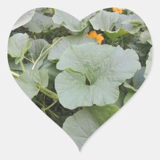 Pumpkin patch heart sticker