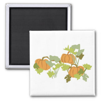 Pumpkin Patch Square Magnet
