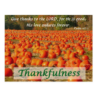 Pumpkin Patch - Thankfulness Postcard