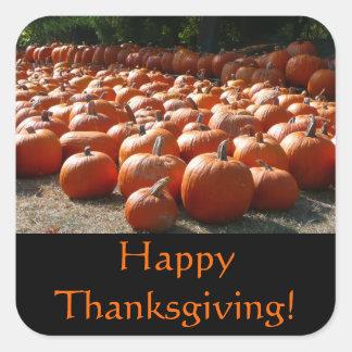 Pumpkin Patch Thanksgiving Sticker