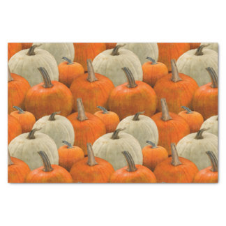 Pumpkin Patch Tissue Paper