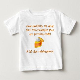 Pumpkin Pie Birthday Shirt