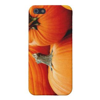Pumpkin Pile iPhone 5/5S Case