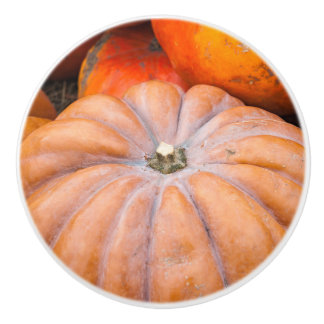 Pumpkin Season Ceramic Knob