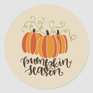 Pumpkin Season Thanksgiving Fall Classic Round Sticker