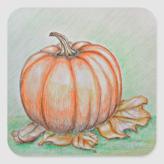 pumpkin square sticker
