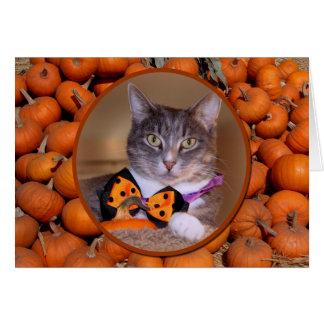Pumpkin Time Greeting Card
