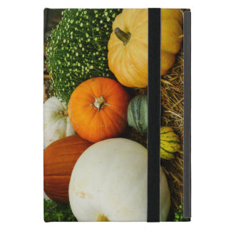 Pumpkins And Gourds Case For iPad Mini