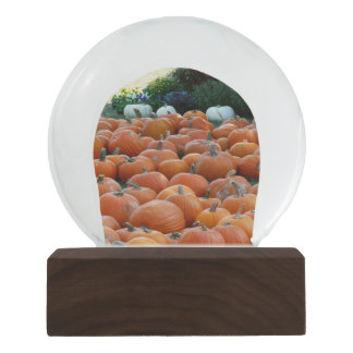 Pumpkins and Mums Autumn Harvest Photography Snow Globe