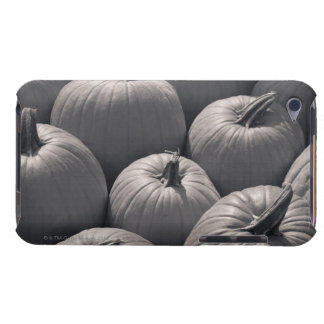 Pumpkins at a local farmer's market barely there iPod case