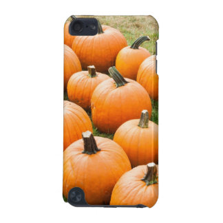 Pumpkins for Sale at a Farmer's Market iPod Touch (5th Generation) Covers