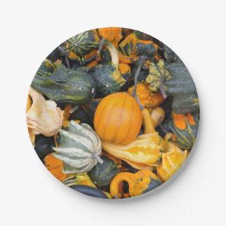 Pumpkins, Gourds & Squash Paper Plate