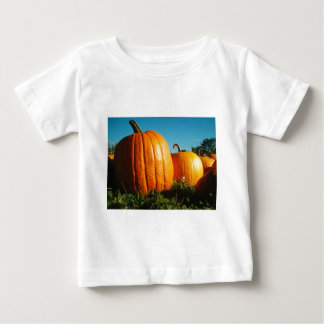 Pumpkins_Hancock_Shaker_village_2418 Baby T-Shirt