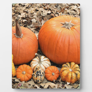 Pumpkins In Leaves Plaque