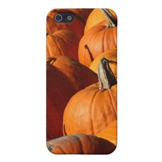 Pumpkins iPhone 5C Case