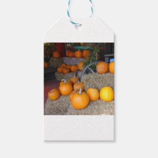 Pumpkins on Straw Gift Tags