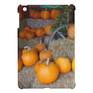 Pumpkins on Straw iPad Mini Cases