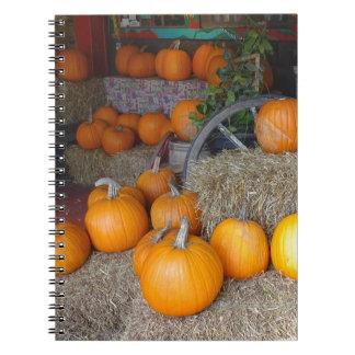 Pumpkins on Straw Notebook
