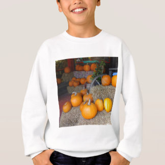 Pumpkins on Straw Sweatshirt