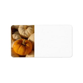 Pumpkins Orange and Gold Address Label