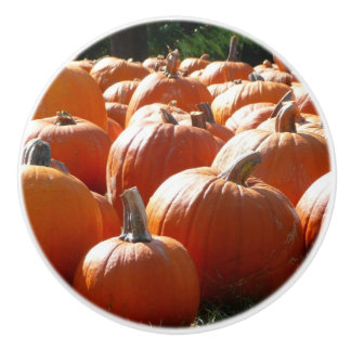Pumpkins Photo for Fall, Halloween or Thanksgiving Ceramic Knob
