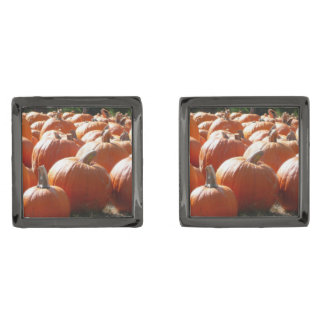Pumpkins Photo for Fall, Halloween or Thanksgiving Gunmetal Finish Cuff Links