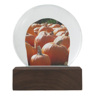 Pumpkins Photo for Fall, Halloween or Thanksgiving Snow Globe