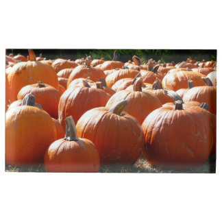 Pumpkins Photo for Fall, Halloween or Thanksgiving Table Number Holder