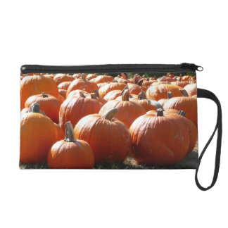 Pumpkins Photo for Fall, Halloween or Thanksgiving Wristlet