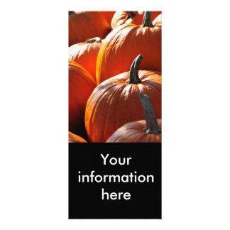 pumpkins! rack card